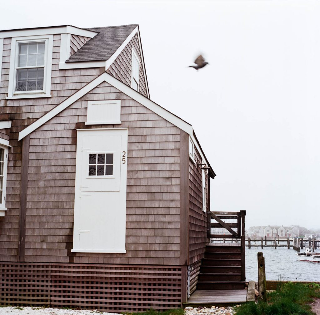 A bird flies over a house in Nantucket, MA